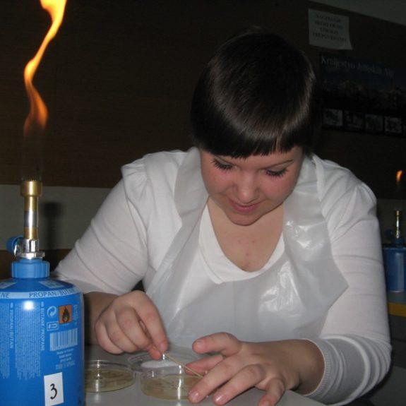 Prenašanje ustnih oblog na hranilni agar, marec 2011, foto Nejc Švent