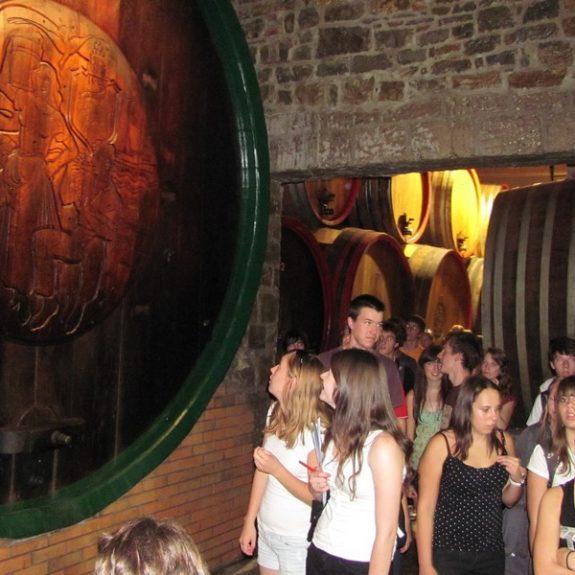 V koprski vinski kleti