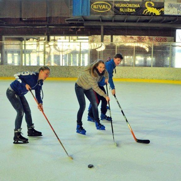 Zimski športni dan za 4. l. - Ljubitelji hokeja, marec 2014, foto N. Bratkovič