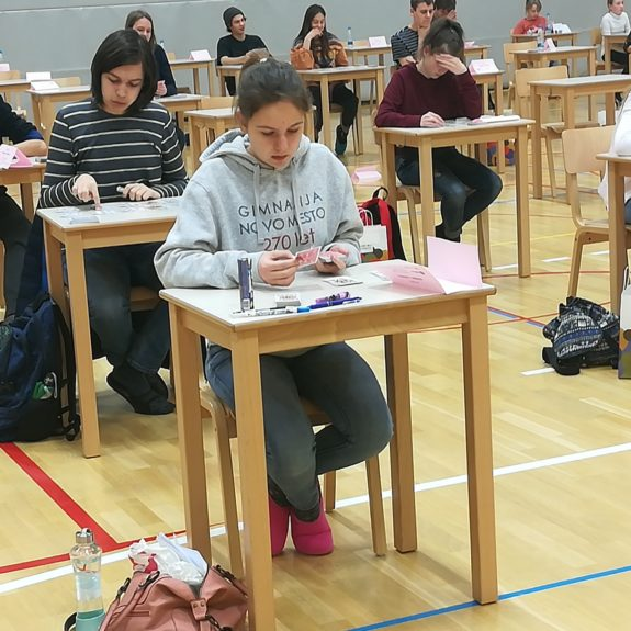 Anja na tekmovalnem prostoru pri disciplini  Karte,  foto: Branka Klemenčič