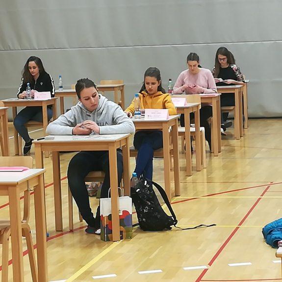 Eva na tekmovalnem prostoru pri disciplini  Karte,  foto: Branka Klemenčič