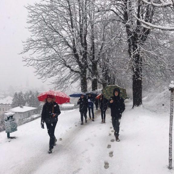 Pohodniki v zimski idili, foto: Breda Vovko