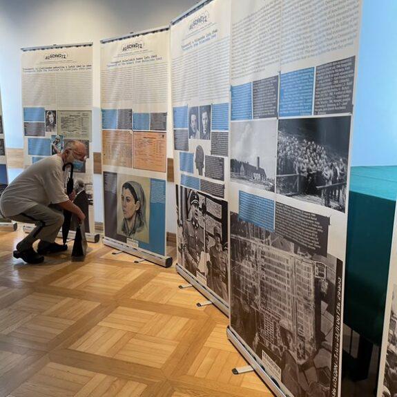 Med ogledom razstave, foto: Maja Tomić